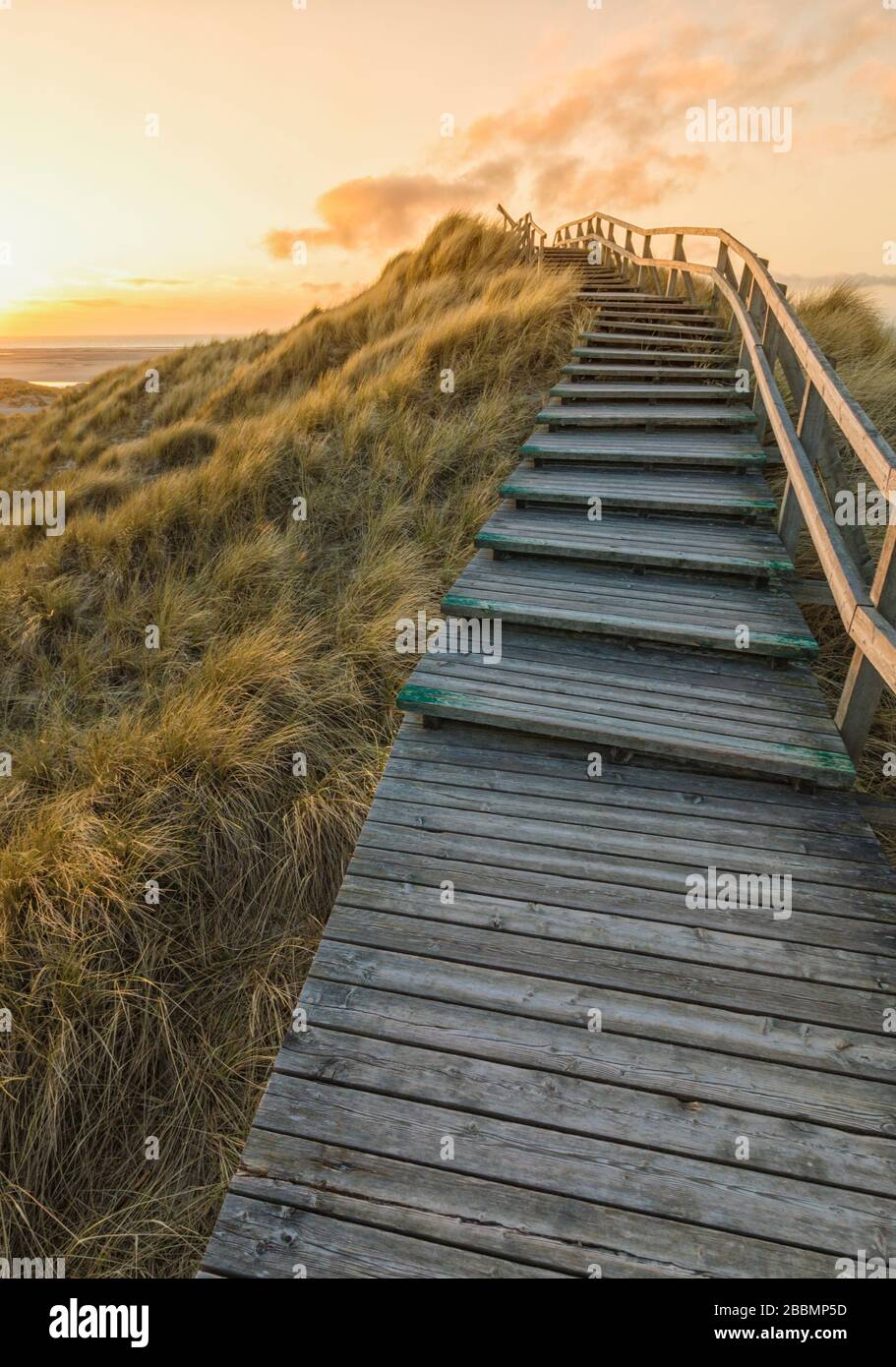 Wooden stairs crossing the dunes to the beach of Norddorf on the German North Sea island of Amrum in  vibrant sunset Stock Photo
