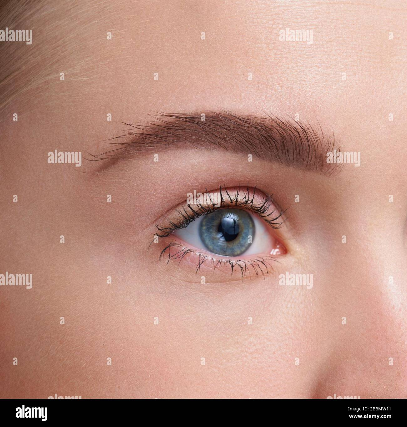 Eyebrows Care. Closeup Of Woman Beautiful Blue Eye, Perfect Shaped Brow, Long Eyelashes With Professional Makeup And Brow Gel Brush. Young Female Mode Stock Photo