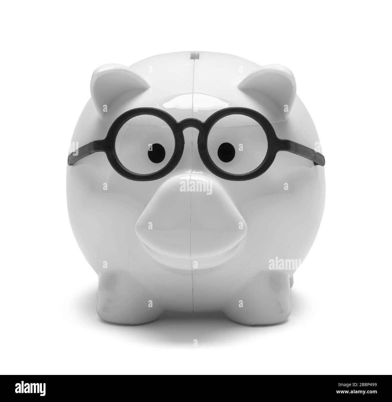 Piggy Bank Wearing Black Glasses Isolated on White. Stock Photo