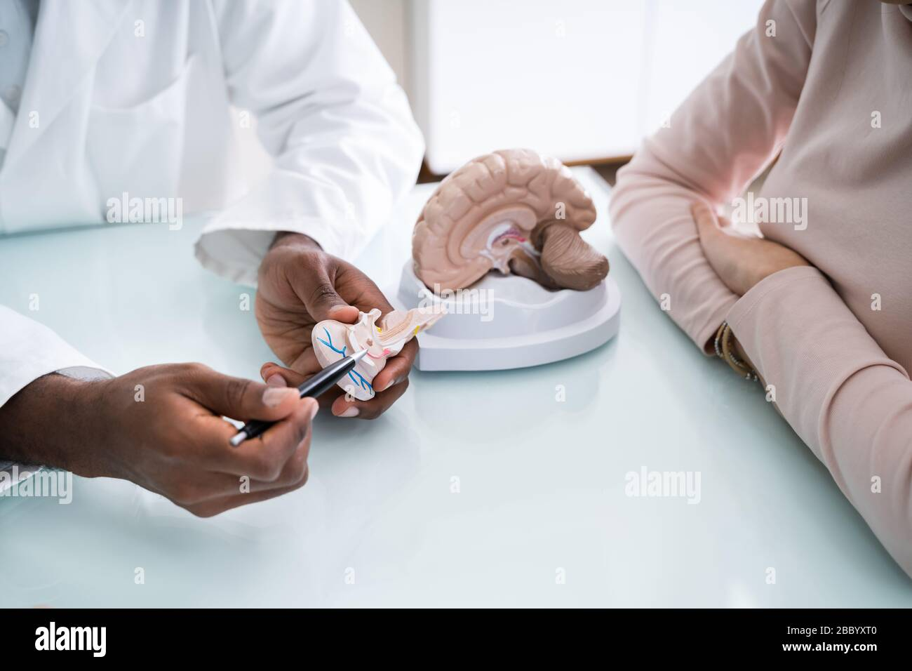 Doctor Explaining Details Of Human Brain To Happy Woman With Model Stock Photo
