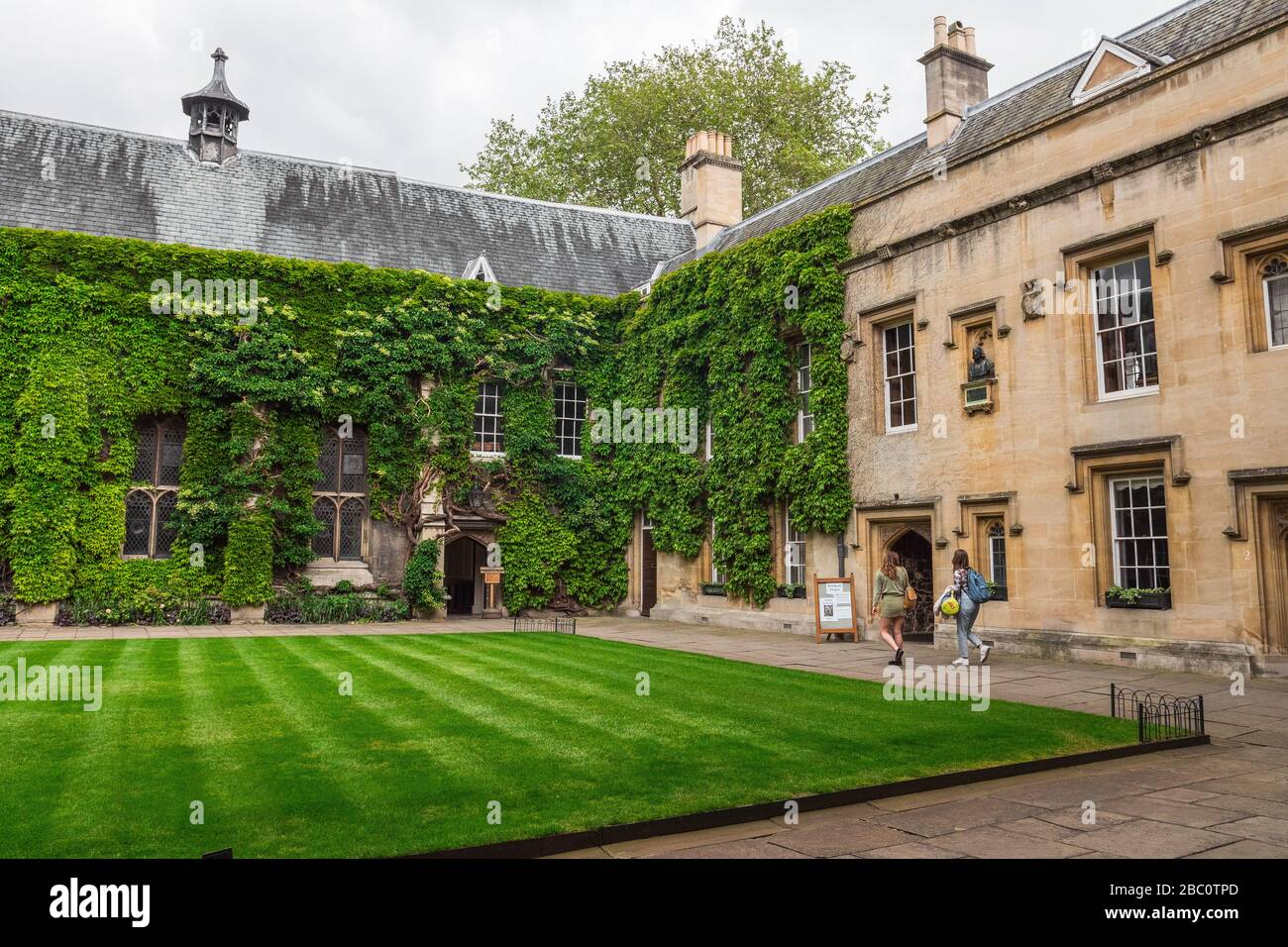 Lincoln College, Oxford, England, United Kingdom. July 2019. The College of the Blessed Mary and All Saints, Oxford University. Climbing plants Stock Photo