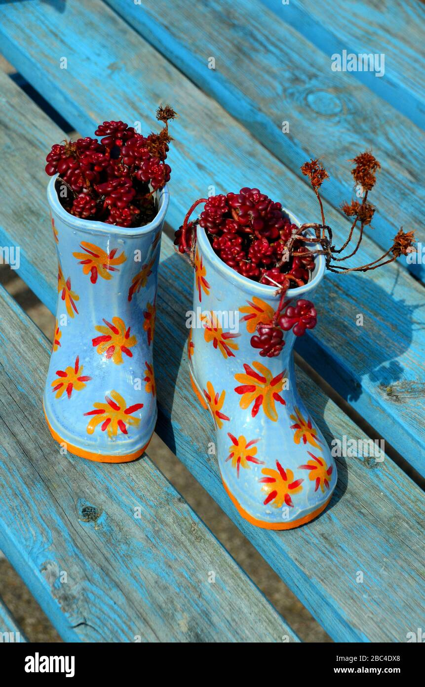 Blue and oranage childs  welly boot planters with  flowers Stock Photo