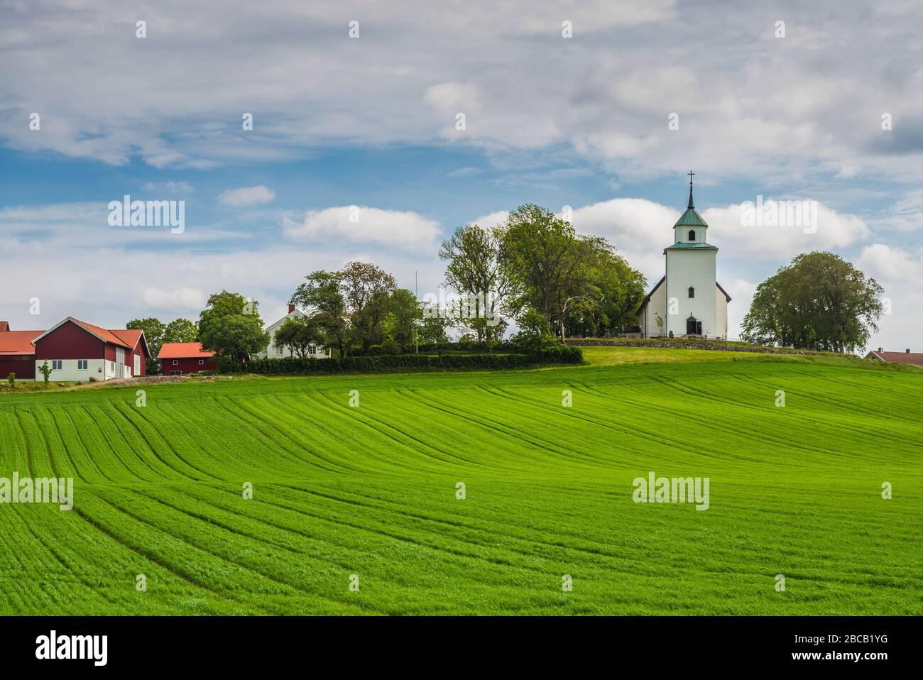 Ancient grave field, Stenehed, Svarteborg, Bohusln, Swede