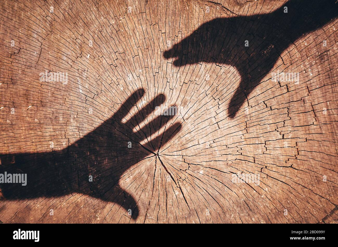 Page 2 Human Hands Two Friends Shaking High Resolution Stock Photography And Images Alamy
