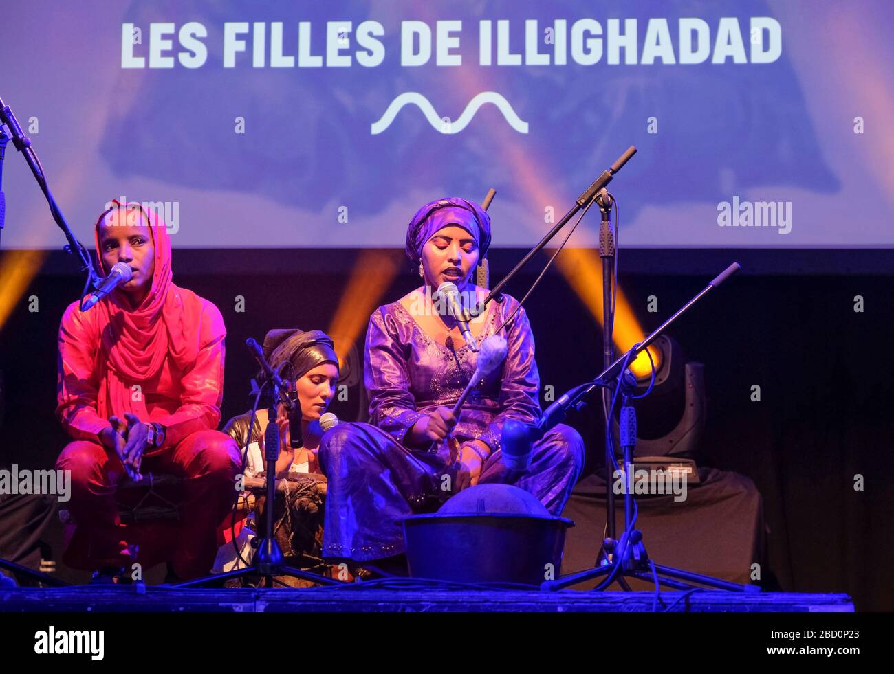 Les Filles De Illighadad High Resolution Stock Photography and ...
