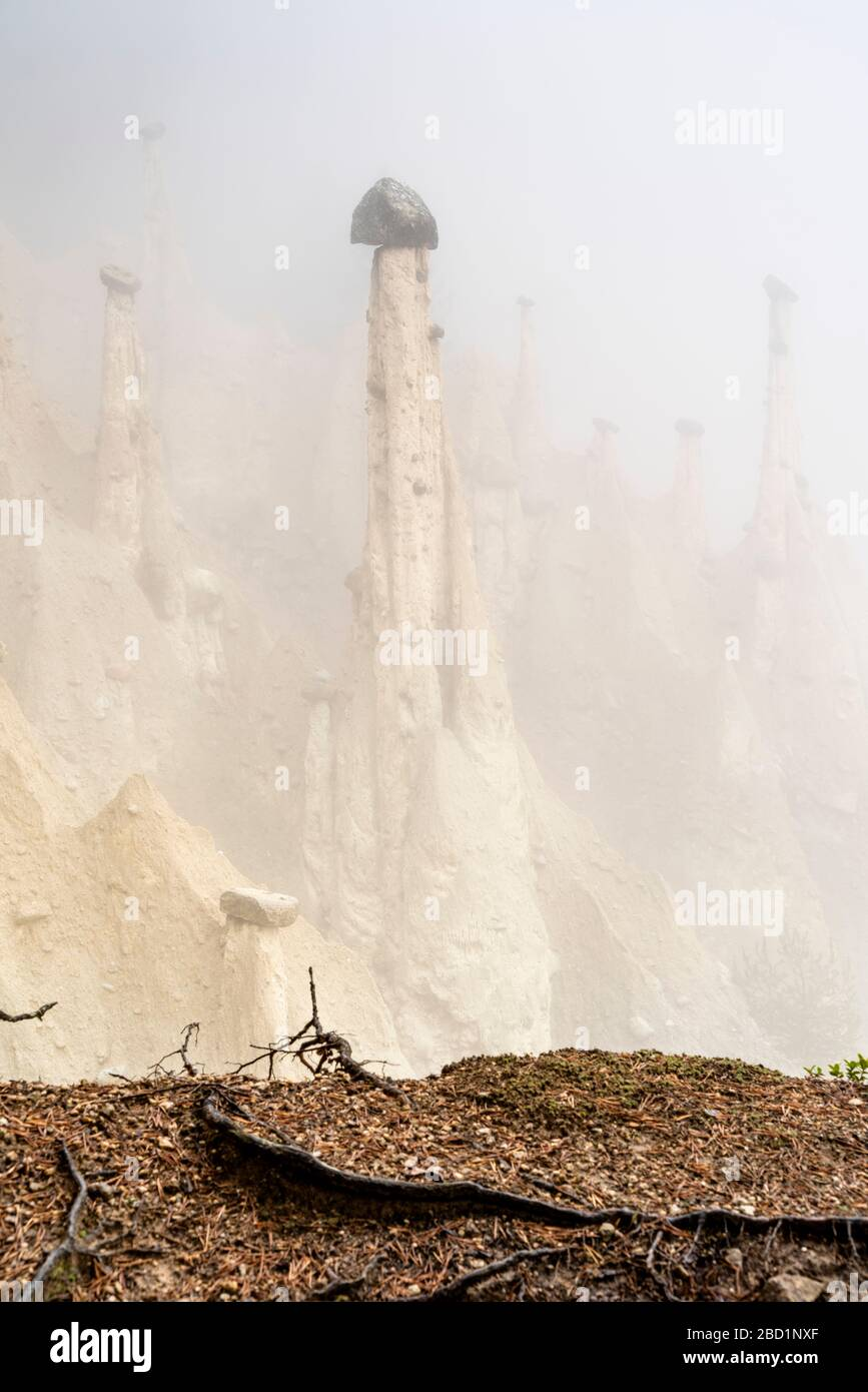 Rock pinnacles of the Earth Pyramids emerging from fog, Perca (Percha), province of Bolzano, South Tyrol, Italy, Europe Stock Photo