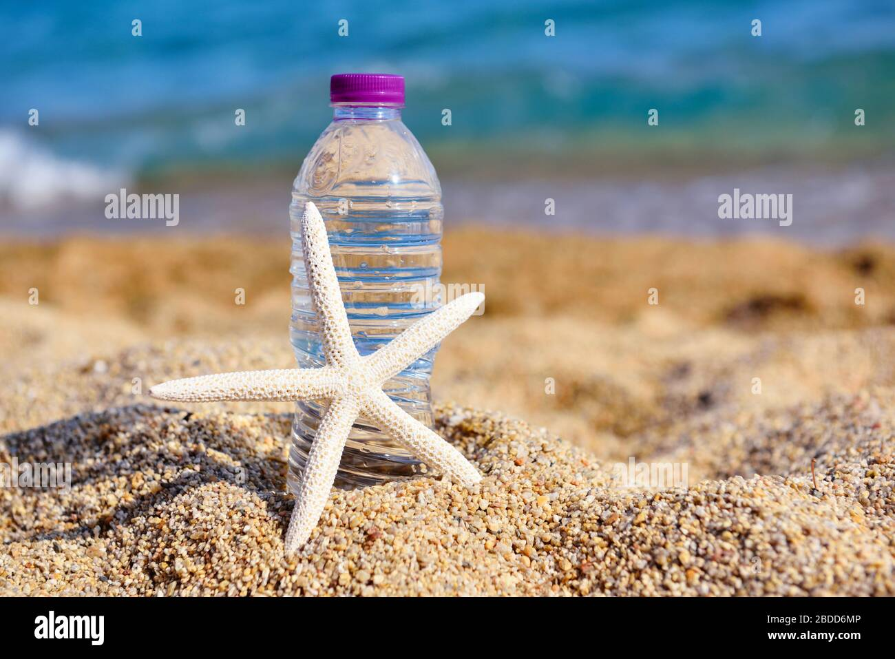 Page 3 Sun Sea Star High Resolution Stock Photography And Images Alamy