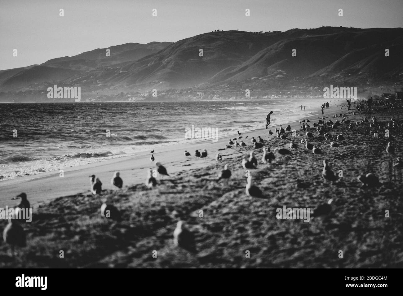 General Views in Back and White of Zuma Beach on 07/09/2019 in Malibu. .Picture by Julie Edwards Stock Photo