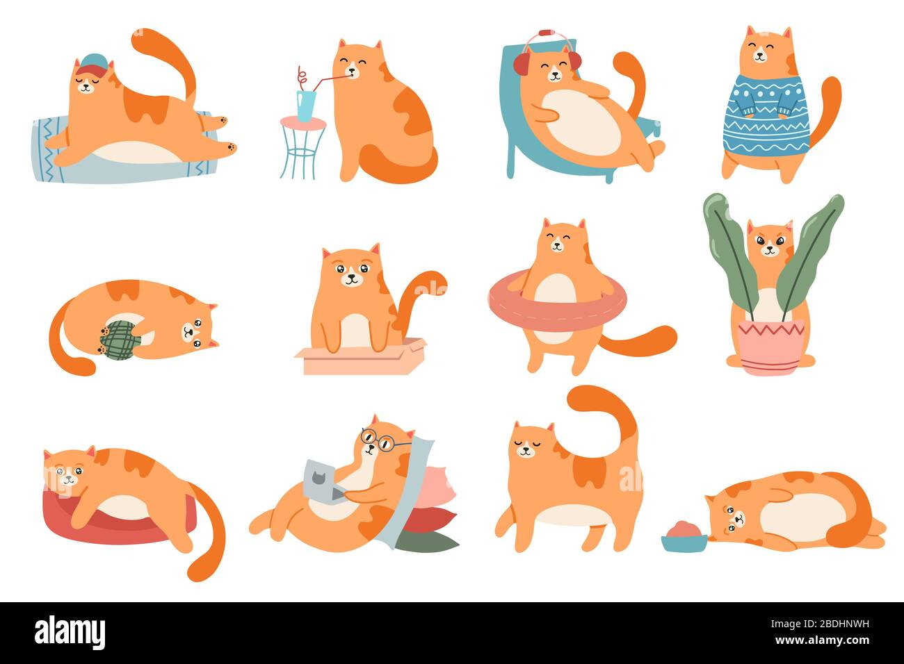 Cute Cats Cat In Box Adorable Red Kitty Sleeping And Fat Cat In Fur Sweater Vector Illustration Set Domestic Animal Lifestyle Comic Pet In Glasses Stock Vector Image Art Alamy