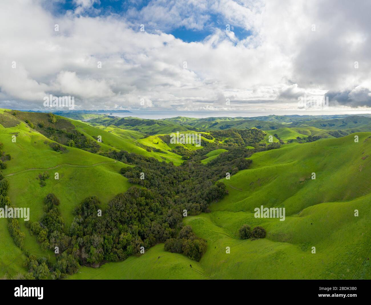 Green Rolling Hills Idyllic Scene in California After Heavy Spri Stock Photo
