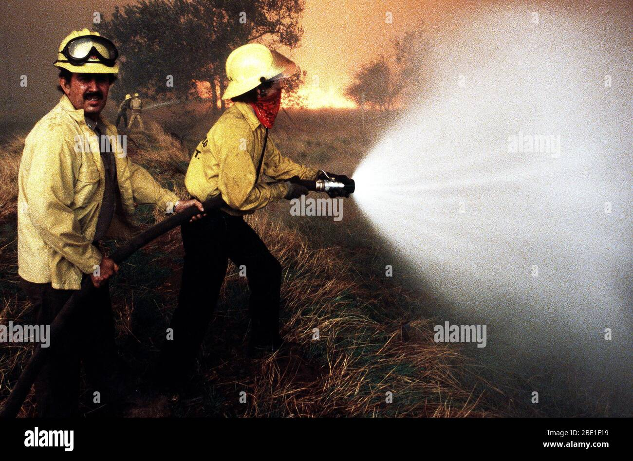 State firefighters spray water on wilderness fires with hoses during the four-day Panorama brush fire, which started in canyons north of town and has been whipped out of control by 40-50 mph winds. Stock Photo
