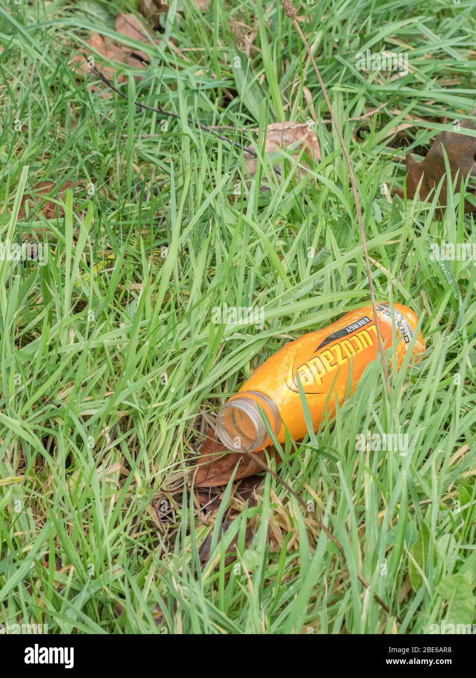 Empty Lucozade bottle in hedgerow long grass. Example of plastic pollution in the countryside, plastic single use rubbish, plastic litter. Stock Photo