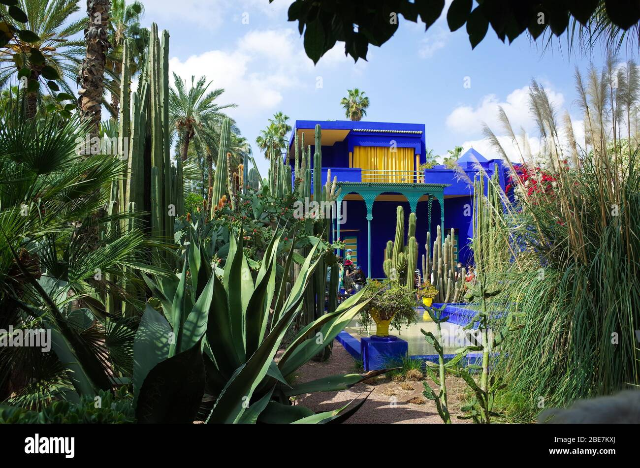 Travel in Morocco at YSL Museum, Blue house of Yves Saint Laurent Stock Photo