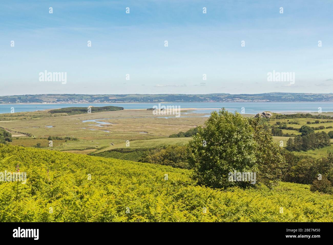 Loughor Estuary, view from Gower Peninsula, Swansea, South Wales, UK Stock Photo