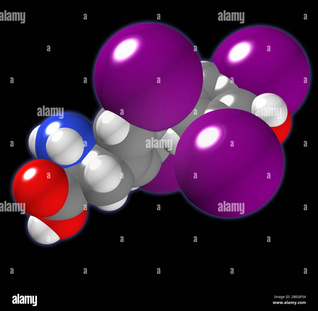 Thyroxine Stock Photo Alamy