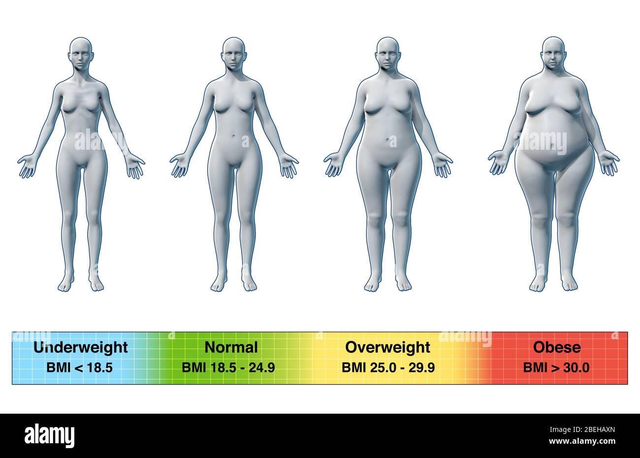 22 pictures bmi female BMI Calculator
