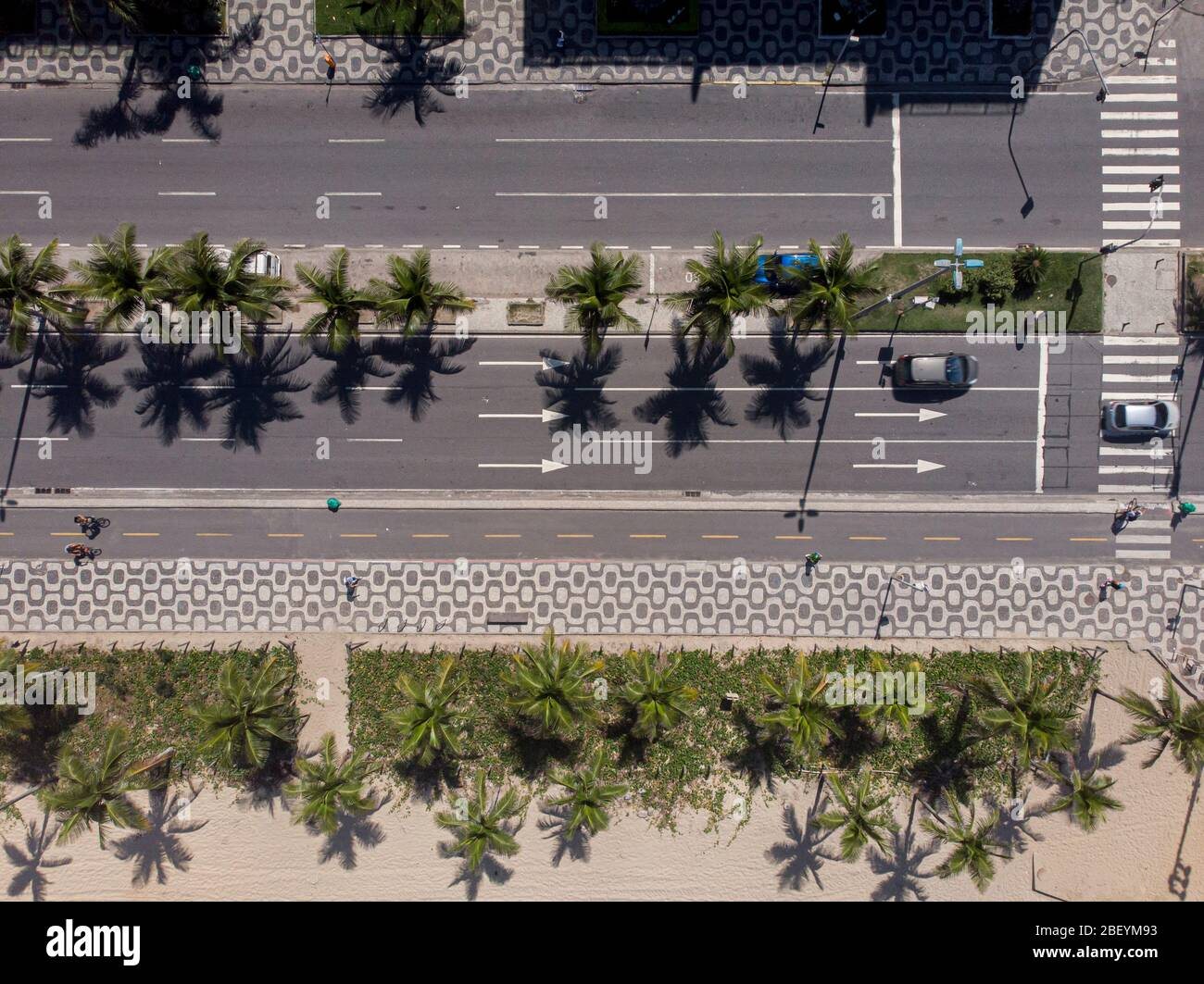 Top down aerial view of Ipanema boulevard with cars passing on the avenue flanked by palm trees and pedestrian crossing with people biking and walking Stock Photo
