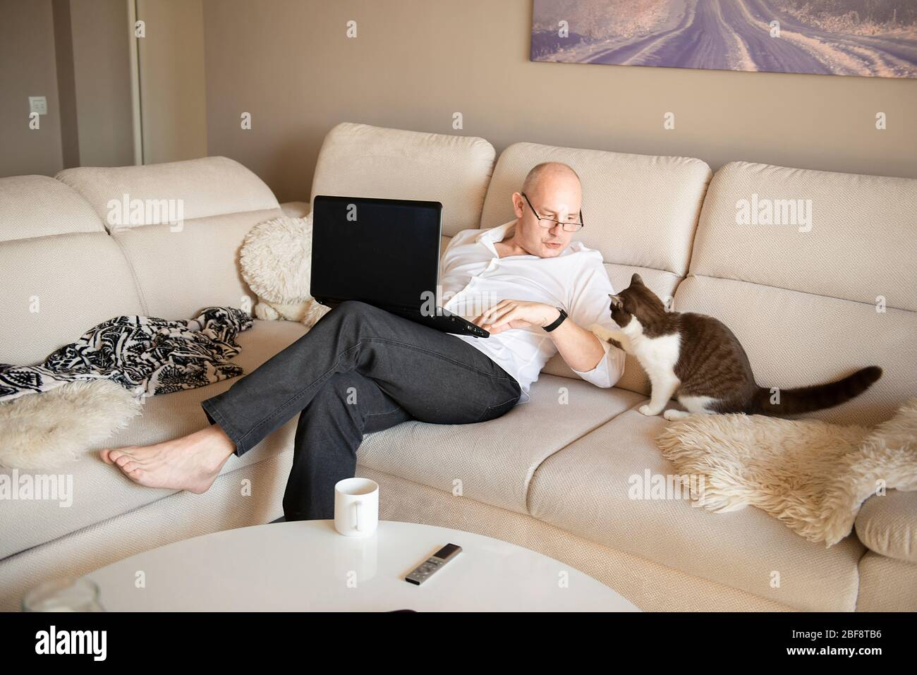 mature man using laptop and playing with cute cat on sofa at home during quarantine of coronavirus covid-19 Stock Photo