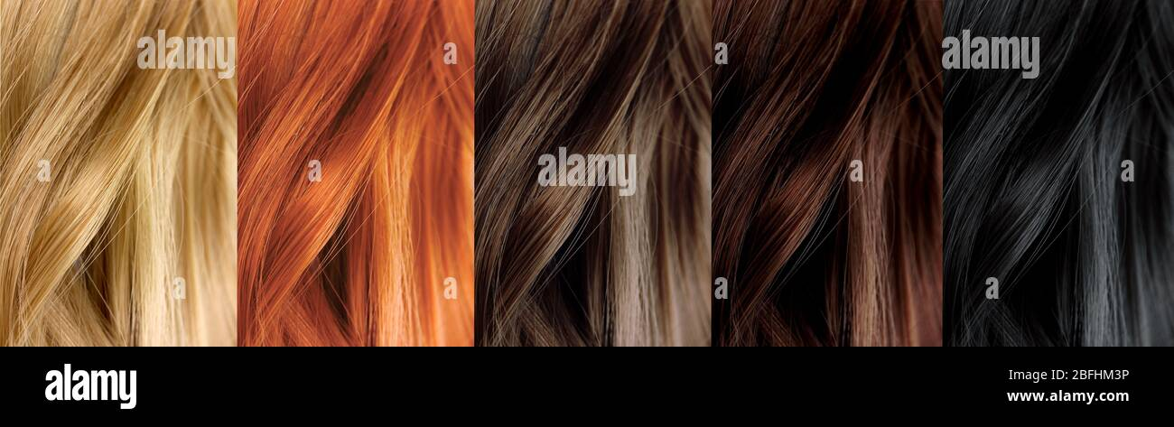 Hair Color Samples Stock Photo