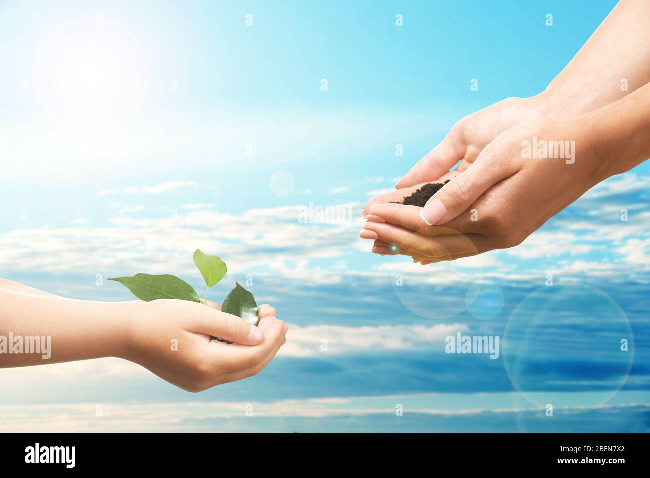Mother and child hands with soil and seedling on sky background. Help and care concept. Stock Photo