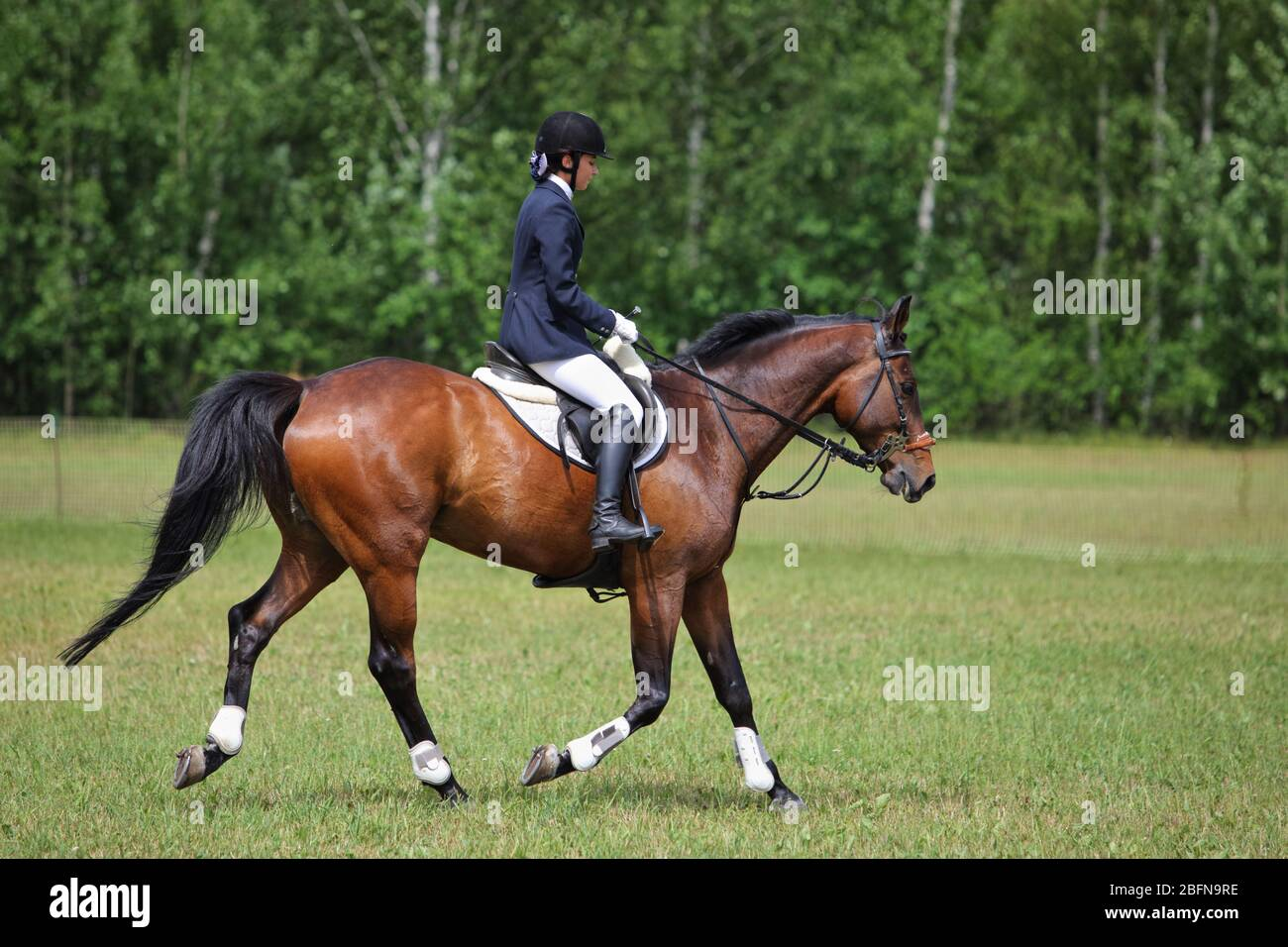 Equestrian Clothes High Resolution Stock Photography And Images Alamy
