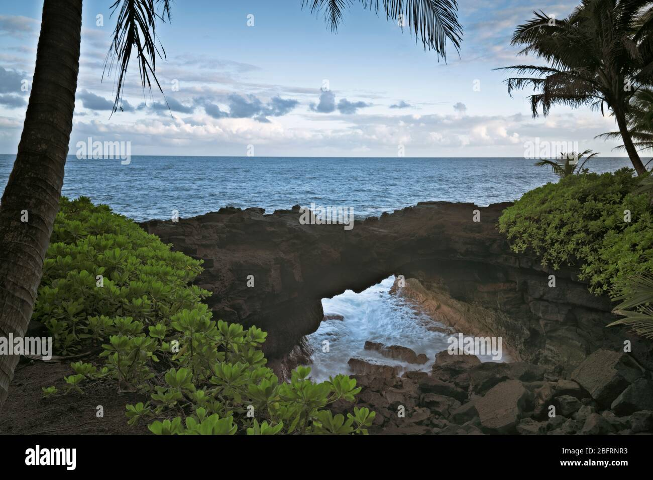 The Pacific Ocean rushes into this natural lava arch along the Puna coastline on the Big Island of Hawaii. Stock Photo