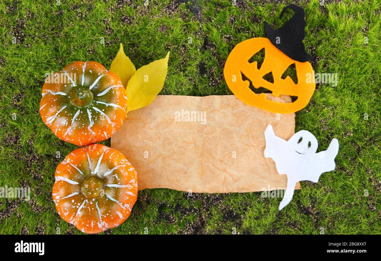 Old paper with Halloween decorations on green moss