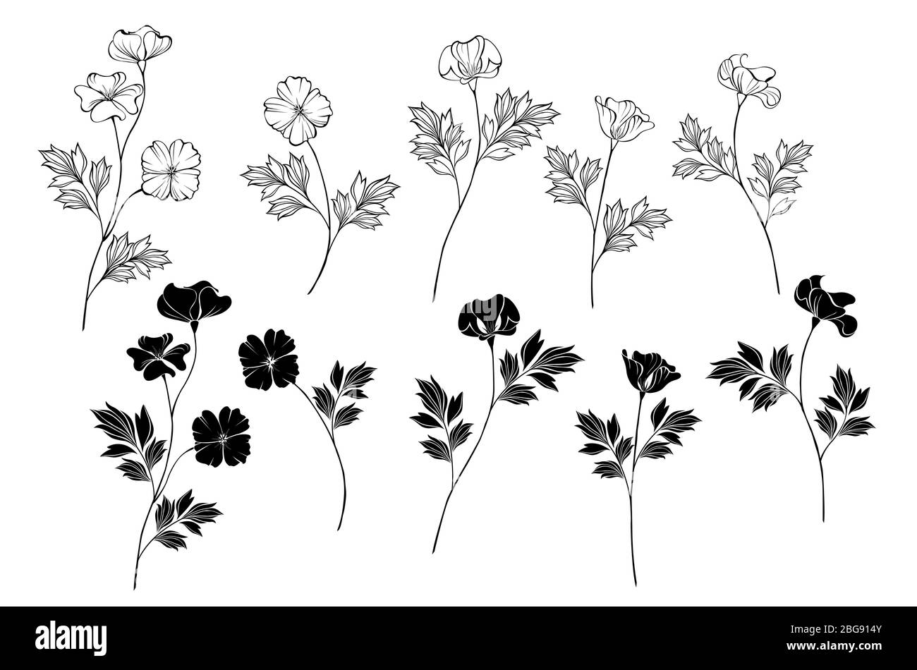 Set of Monochome (black and white) flowers California Poppy on isolated background. Stock Vector