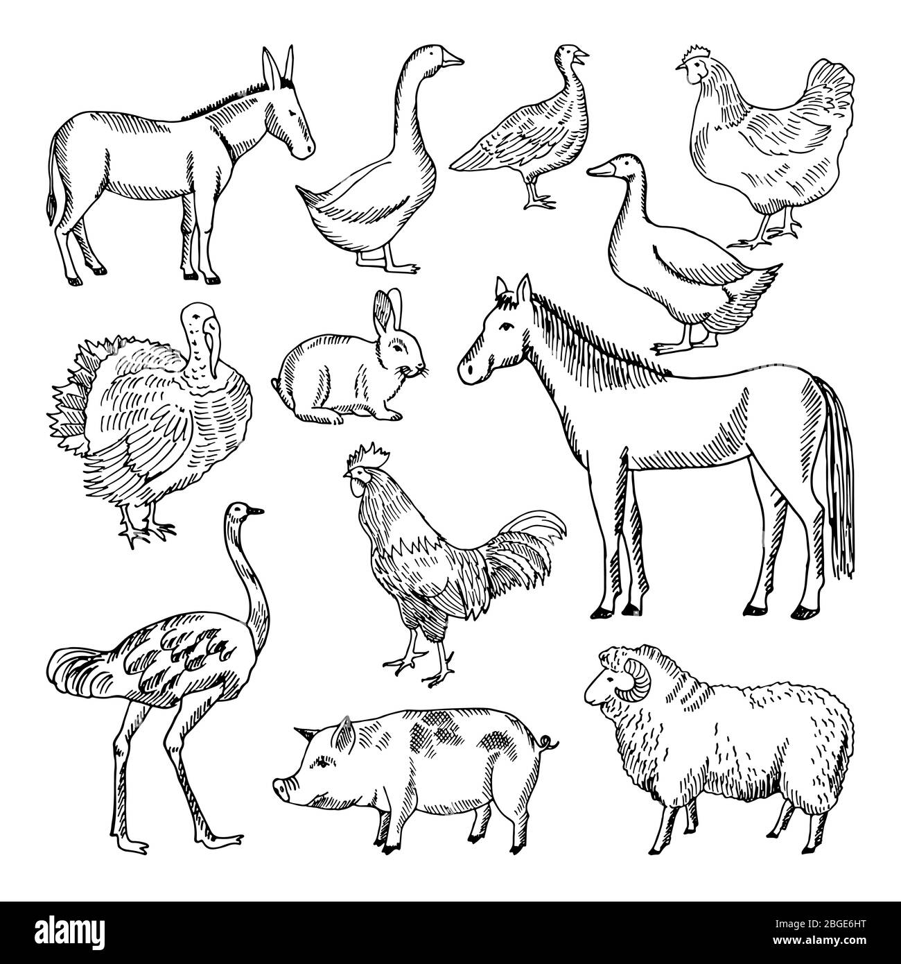 Farm animals set in hand drawn style. Vector illustrations Stock Vector