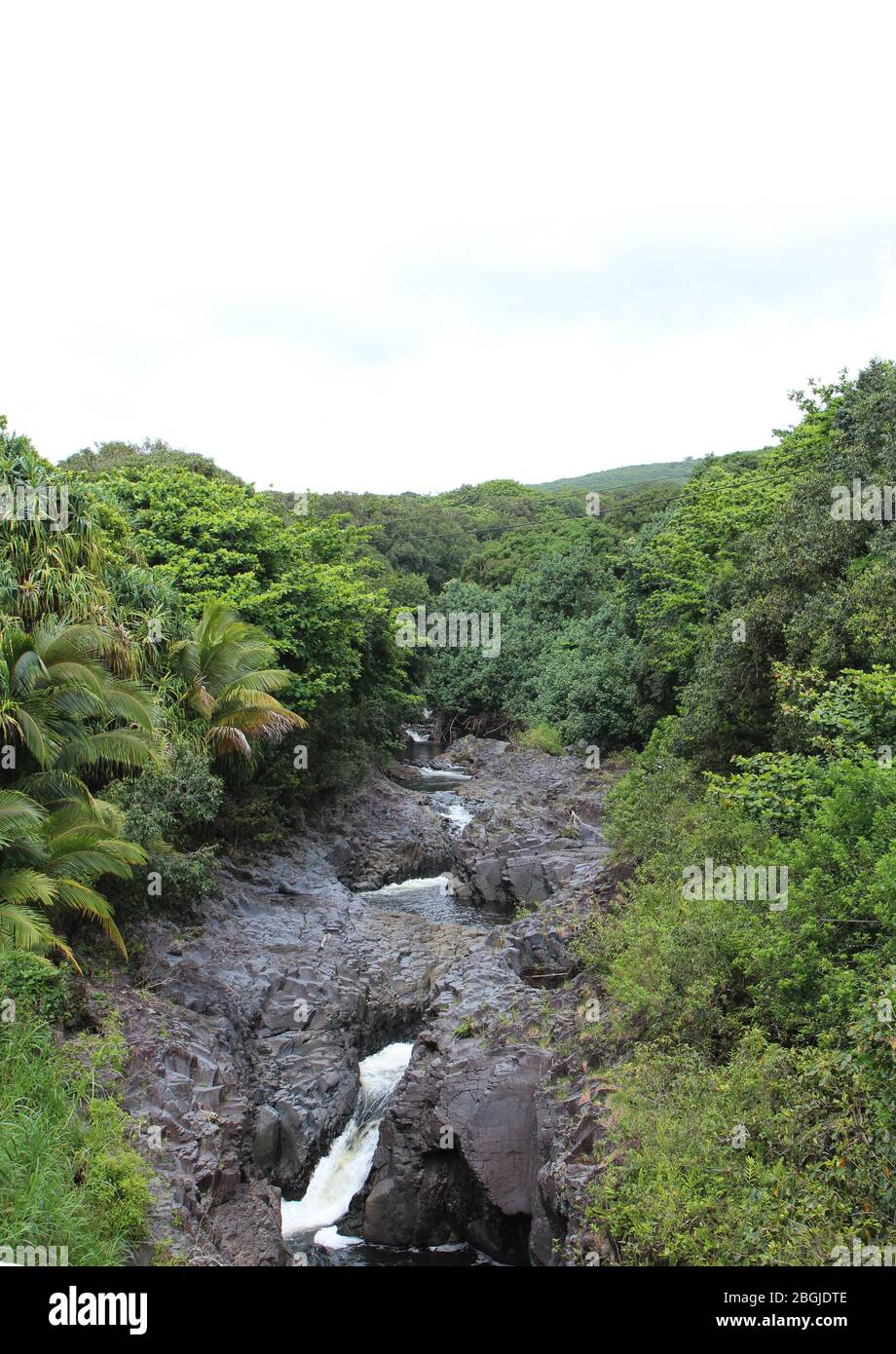 The Seven Sacred Pools, Oheo Gulch, formed by the Palikea Stream flowing through volcanic rock surrounded by rainforest in the Kipahulu District, Maui Stock Photo