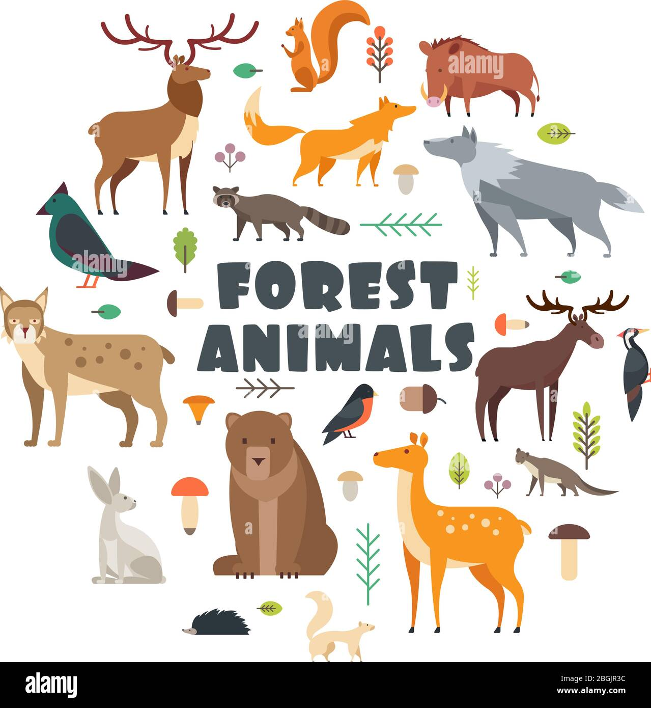 Wild forest animals and birds arranged in circle. Vector cover design. Wild mammal and forest bear, bird, fox illustration Stock Vector