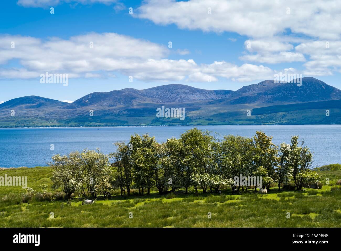 Mountains of Isle of Arran from Kintyre, Argyll coast, Scotland Stock Photo
