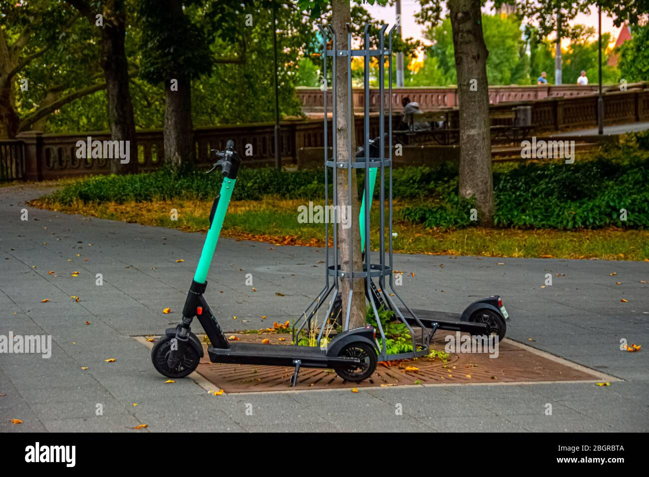 electric-scooters-parked-and-ready-for-renting-2BGRBTA.jpg?profile=RESIZE_400x
