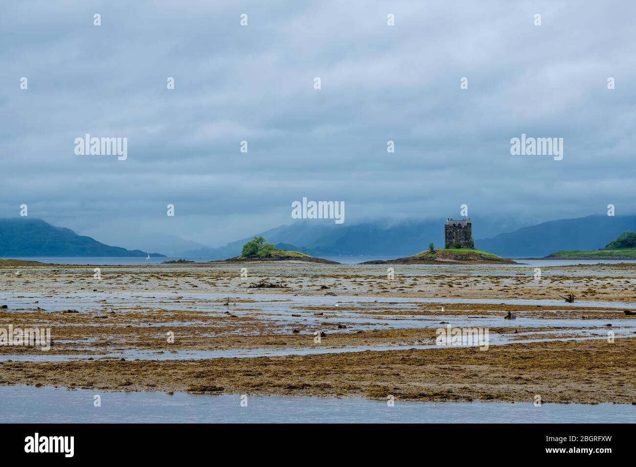 15th Century Stalker Castle tower house and the mudflats of Loch Laich at Appin, Argyll, Scotland. Beyond is Loch Linnhe, Stock Photo