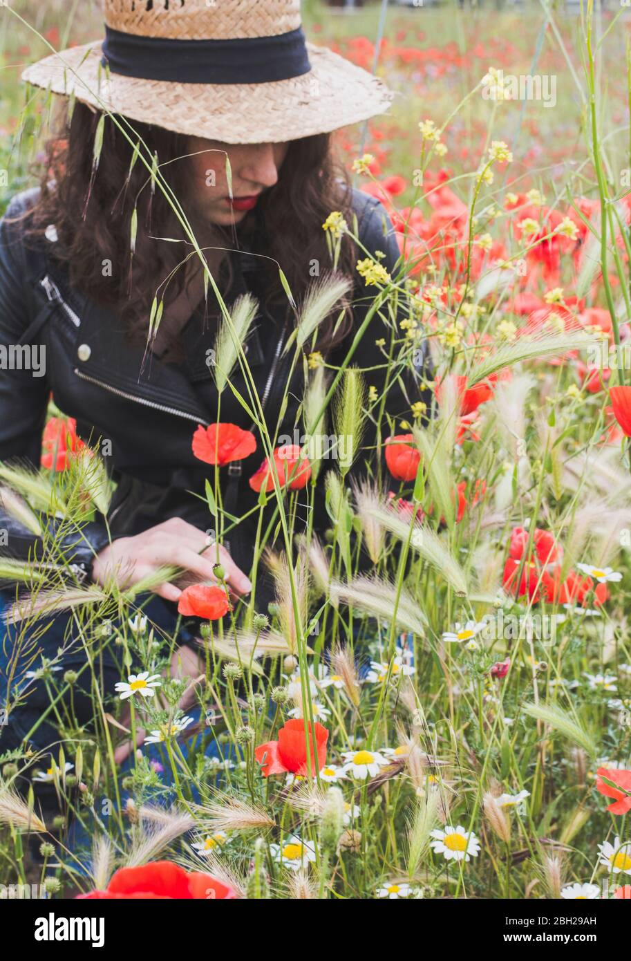 Young woman crouching in poppy field Stock Photo