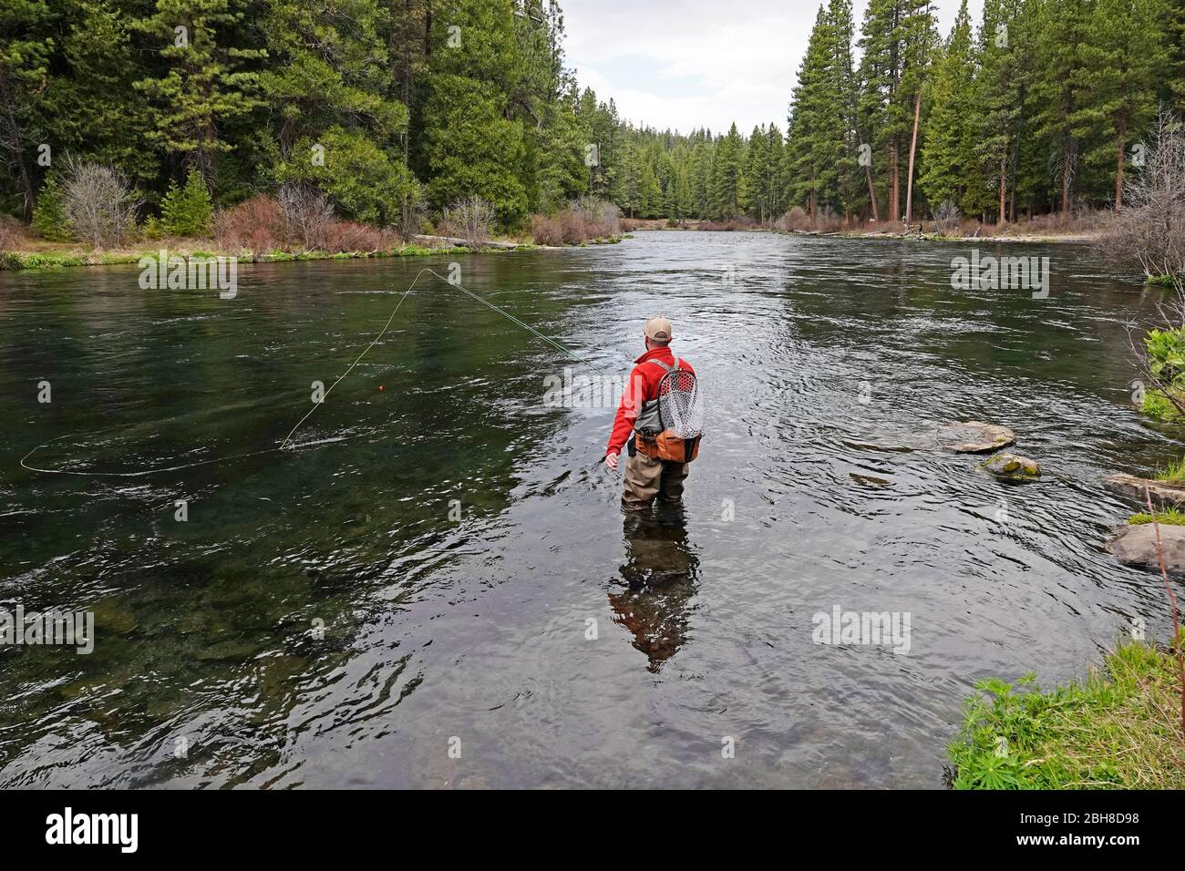 An angler casts for rainbow trout on the Metolius River in central Oregon's Cascade Mountains near the small town of Camp Sherman, Oregon. Stock Photo