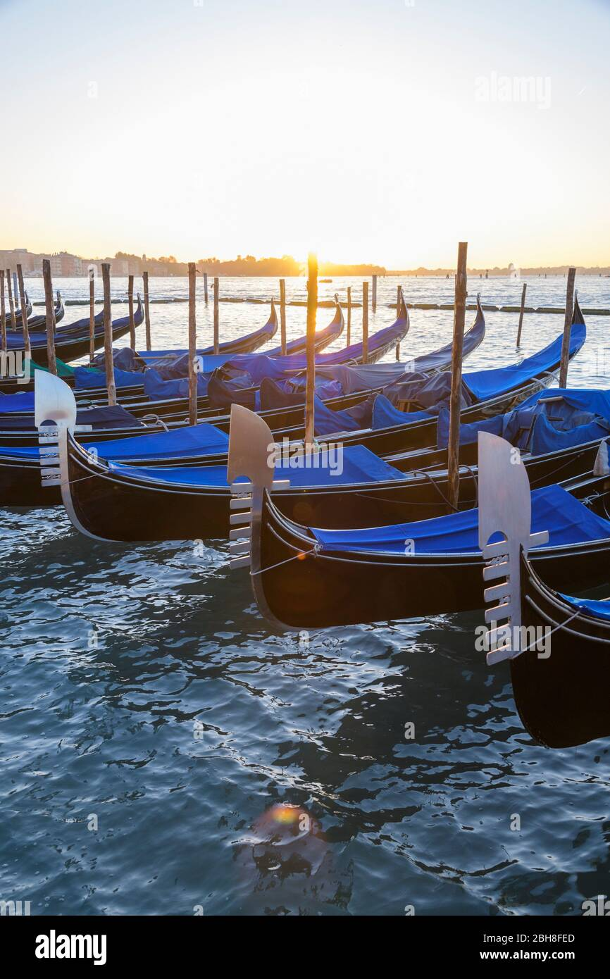 Gondolas on Grand Canal at sunrise, Venice, Lagune von Venedig, Veneto, Italy Stock Photo