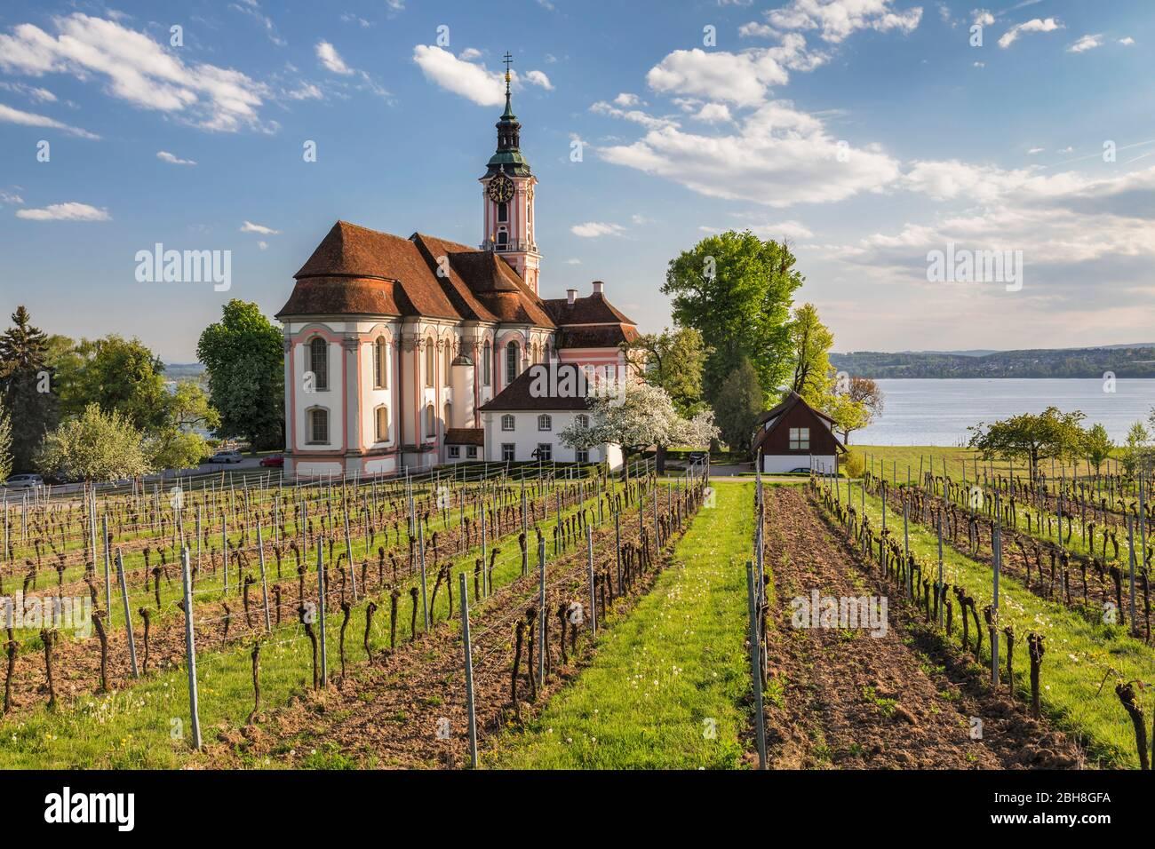Kloster Birnau, Unteruhldingen, Bodensee, Baden -Württemberg, Deutschland Stock Photo