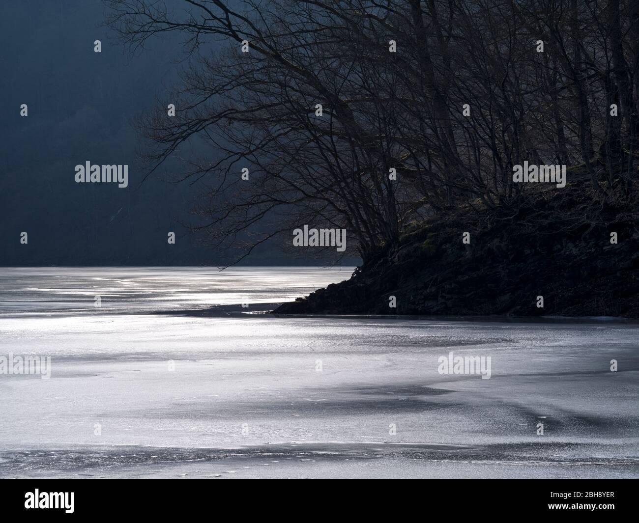 Europa, Deutschland, Hessen, Vöhl, Nationalpark Kellerwald-Edersee, Winterlicht an der Wooghölle, Buchenwald, glitzerndes Eis Stock Photo