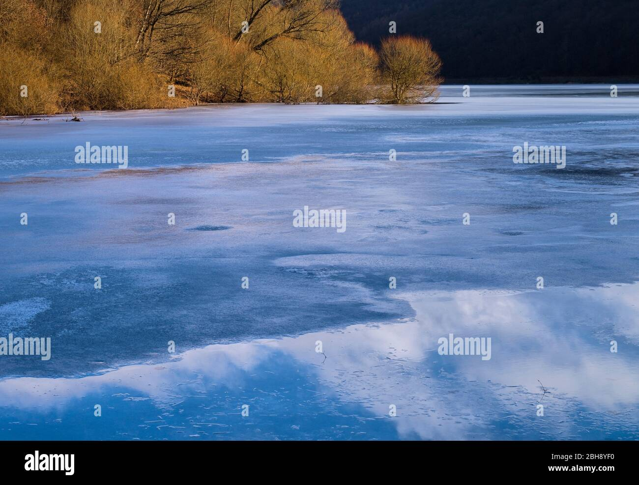 Europa, Deutschland, Hessen, Vöhl, Nationalpark Kellerwald-Edersee, Winterstimmung, Weidenbäume am Ufer der Wooghölle, Wolkenspiegelung Stock Photo