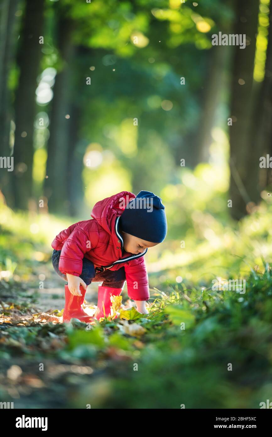 Little toddler boy in red rubber boots and red jacket in spring park. Lush green forest leaves on background Stock Photo