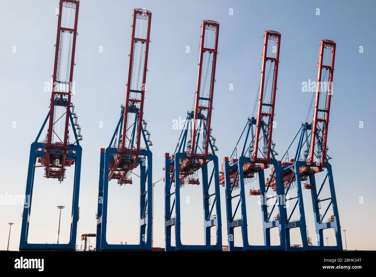 A row of large containter gantry cranes with jibs up at the Container Terminal Tollerort CTT in the Port of Hamburg, run by the HHLA Stock Photo