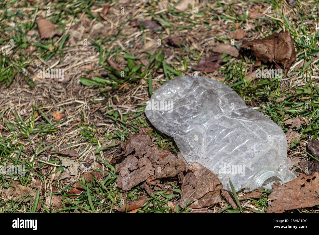 A plastic water bottle has been flattened and sits on the grass outside. Stock Photo