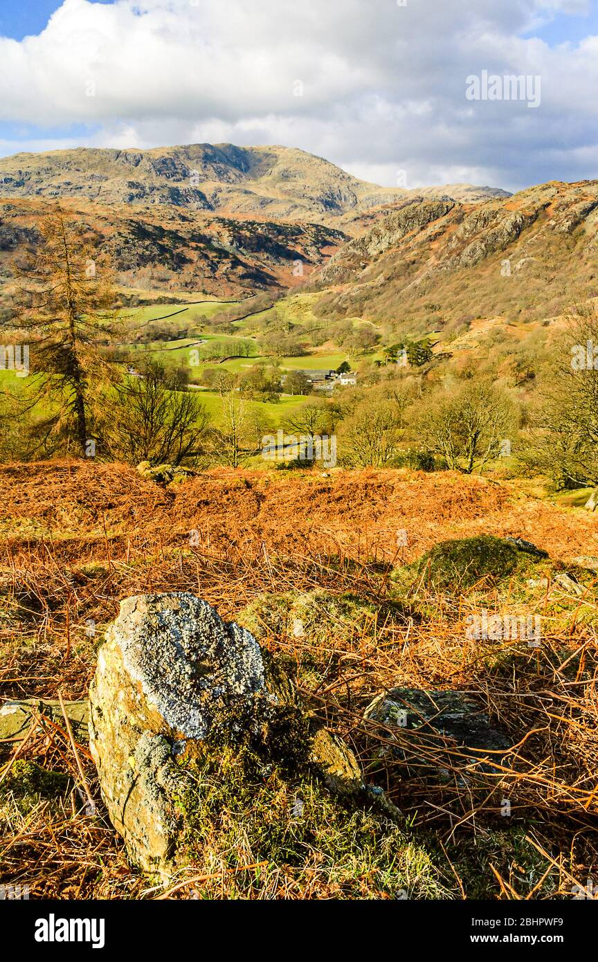 Yewdale and Wetherlam from Tarn Hows Intake, near Coniston in the Lake District Stock Photo