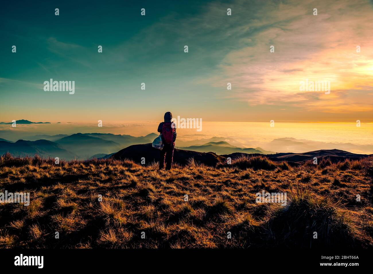 An adult mountainer standing at the peak of Mt. Pulag enjoying the breathtaking view of sea of clouds during sunrise. Stock Photo