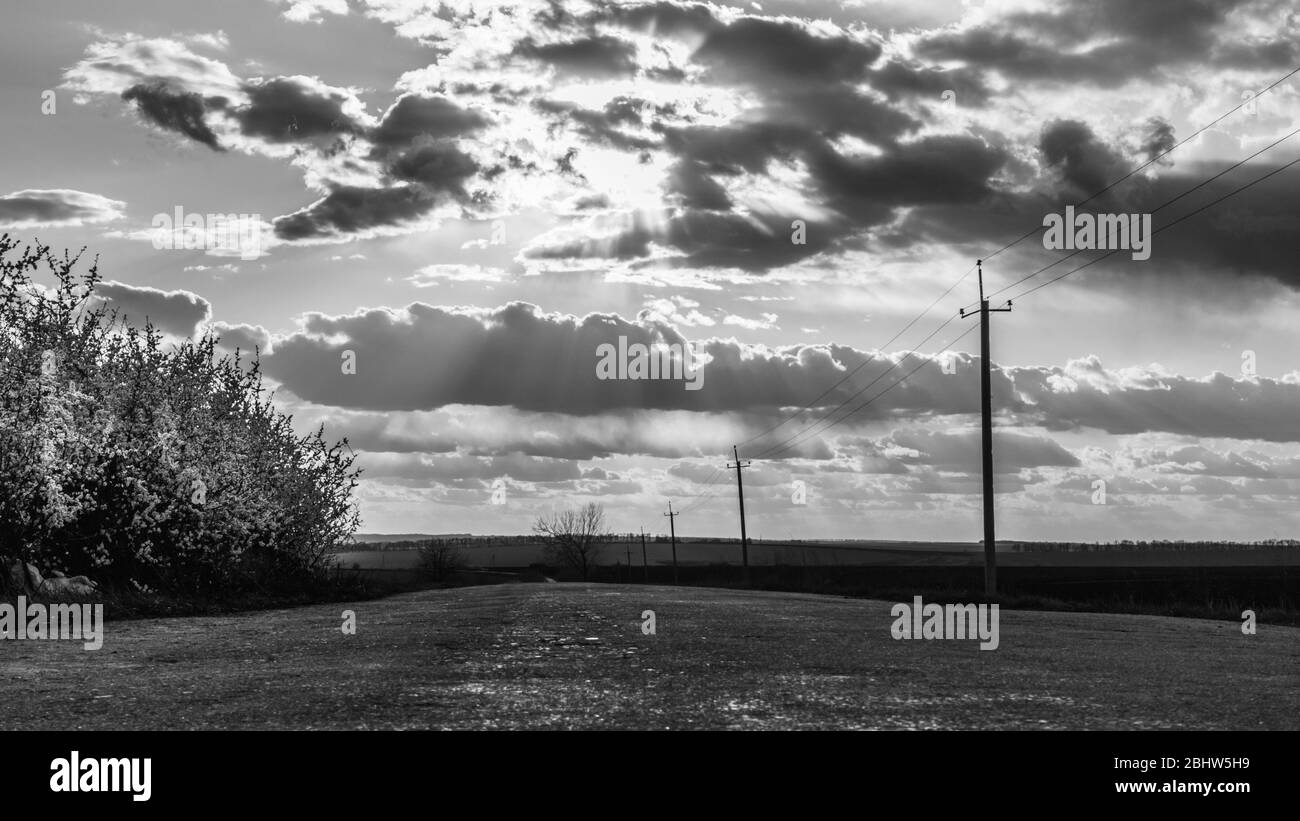 Greyscale High Resolution Stock Photography And Images Alamy