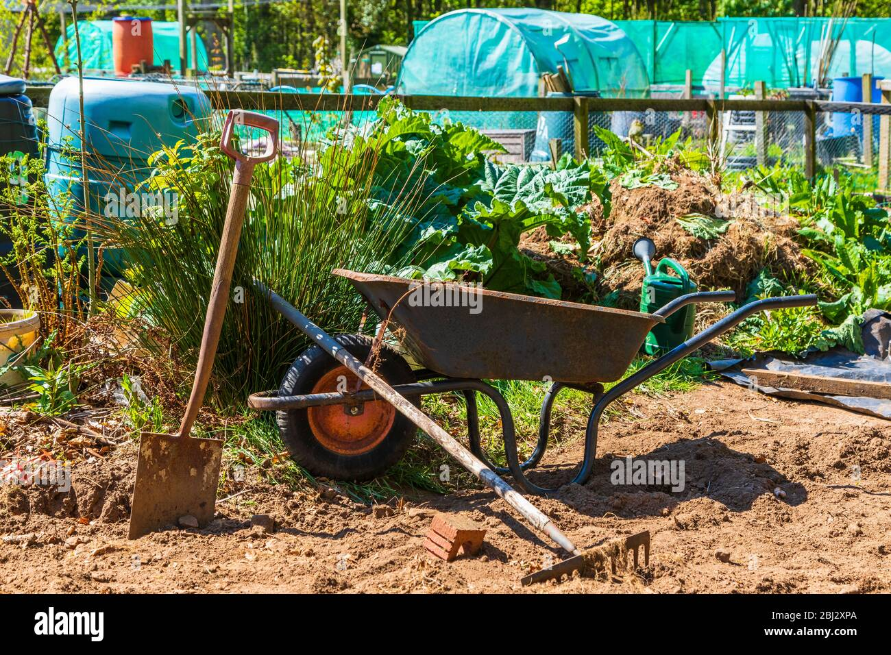 Detail of allotments in Troon allotments society gardens, Troon, Ayrshire, Scotland, UK Stock Photo