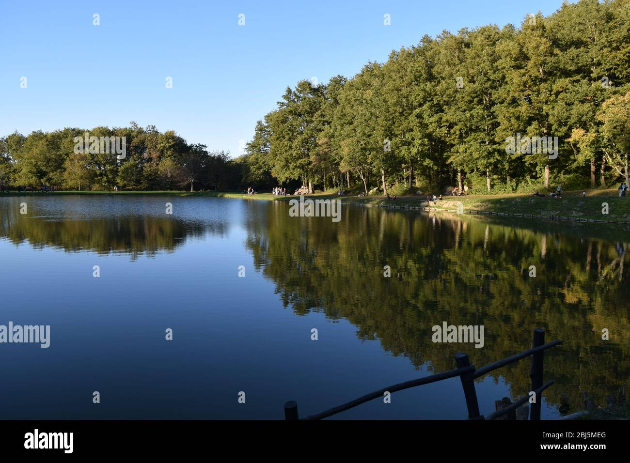Trees perfectly reflected on placid blue water in a public park. Bagno di Romagna, Emilia Romagna, Italy Stock Photo