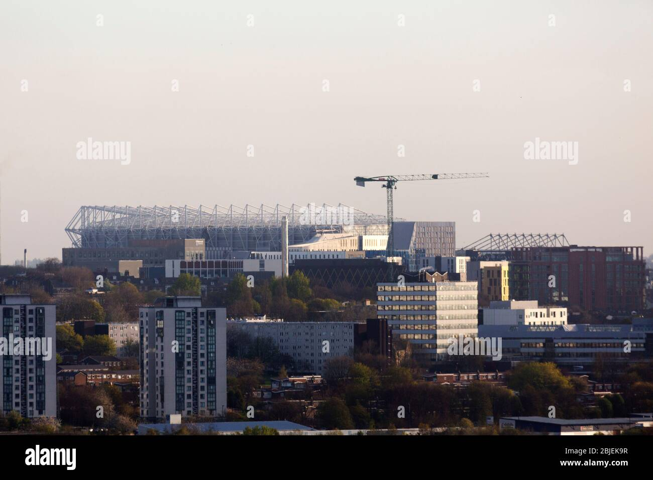Buildings in Newcastle upon Tyne, England. The skyline includes residential tower blocks and the St James' Park football stadium. Stock Photo