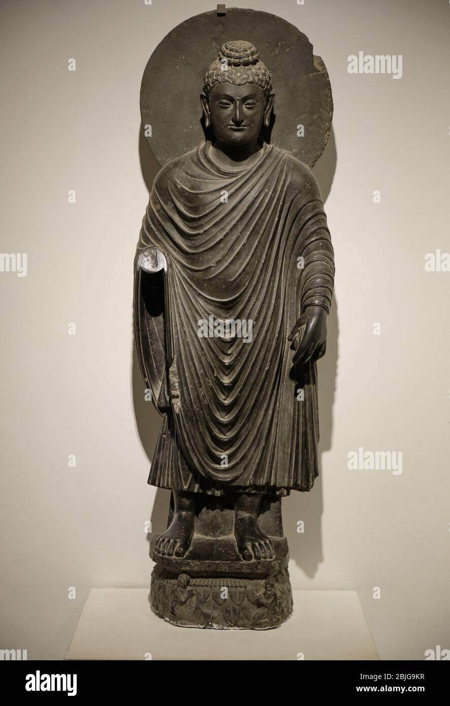 New Delhi India September 26 2019 2nd Century Greco Buddhist Statue Of Standing Buddha From Gandhara In The National Museum Of India In New Del Stock Photo Alamy